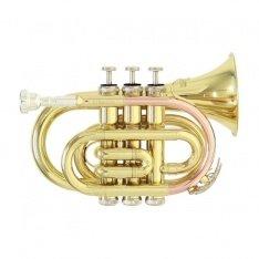 Кишенькова труба Roy Benson PT-101