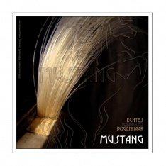 Волос для смичка віолончелі Gewa Mustang 450.924