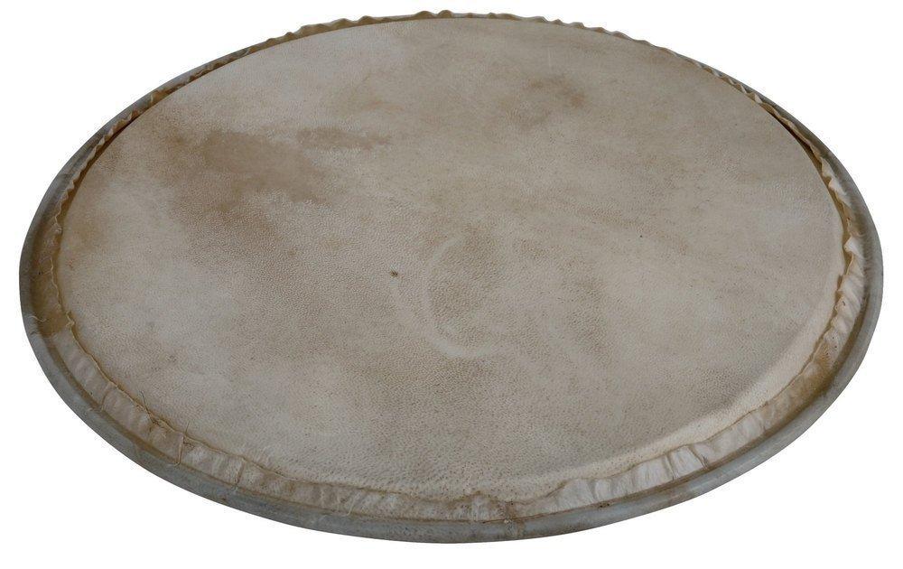 Мембрана Latin Percussion WB505A