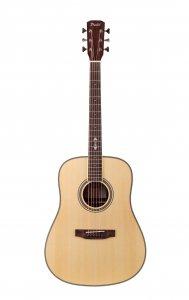 Акустична гітара Prima DSAG205 Acoustic Guitar