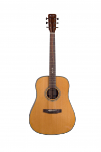 Акустична гітара Prima DSAG219 Acoustic Guitar