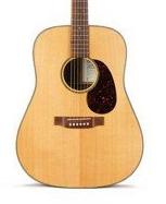 Акустична гітара Martin SWDGT
