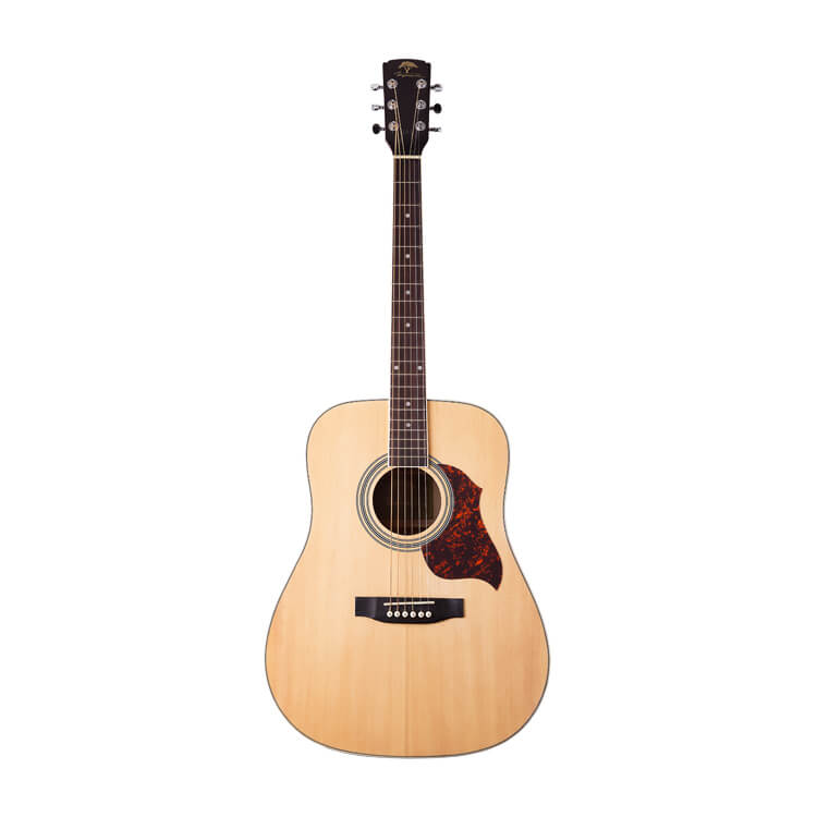 Акустична гітара Virginia VD90