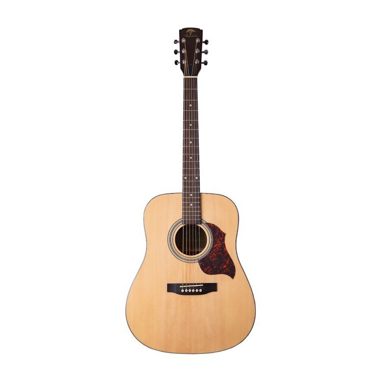 Акустична гітара Virginia VD100