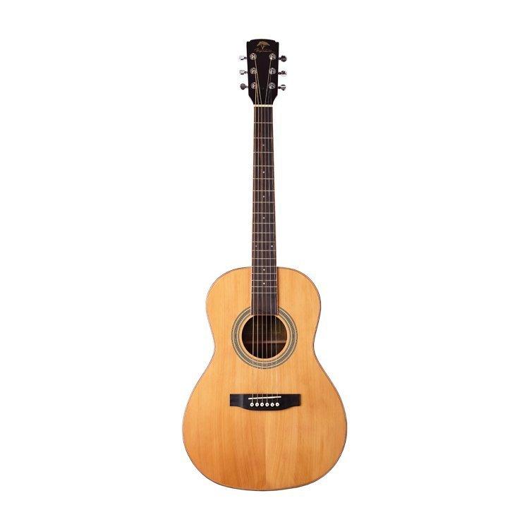 Акустична гітара Virginia VAP20S