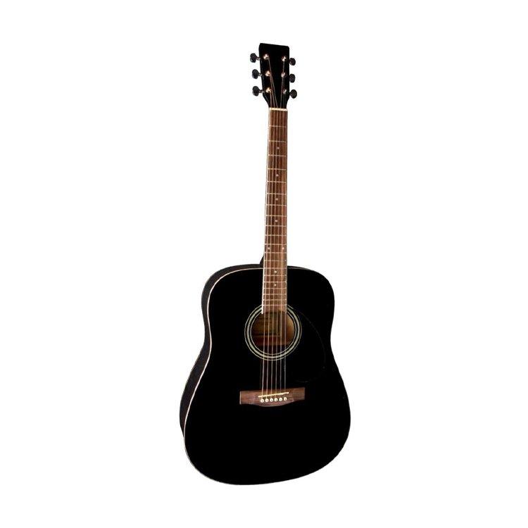 Акустична гітара VGS-Pure D-10 BK