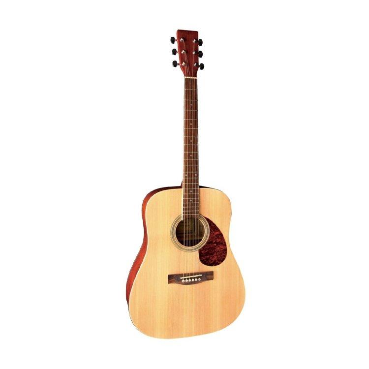 Акустична гітара VGS-Pure D-10 NT