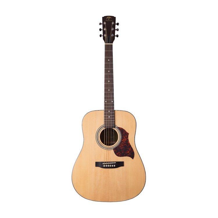Акустична гітара Virginia V-D22