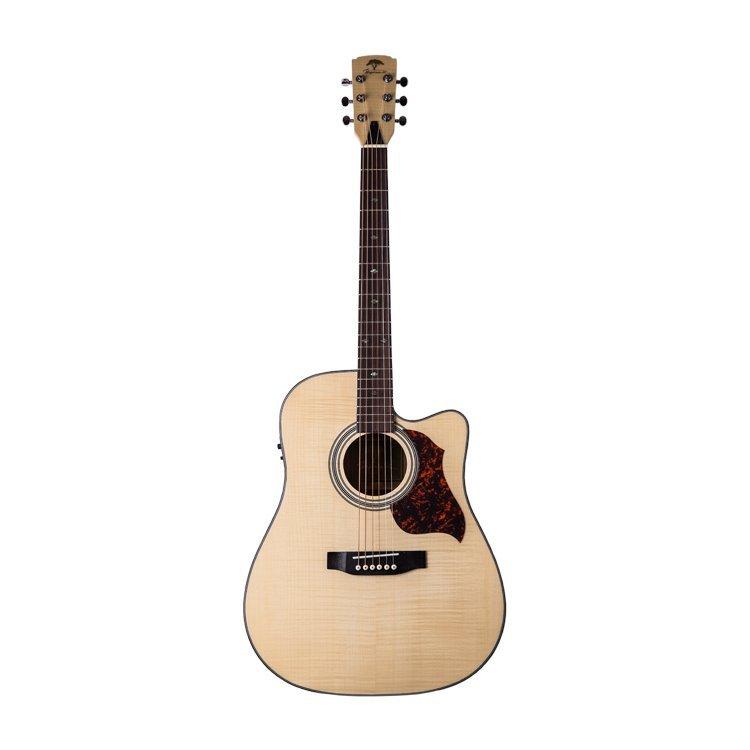 Акустична гітара Virginia VD190CE