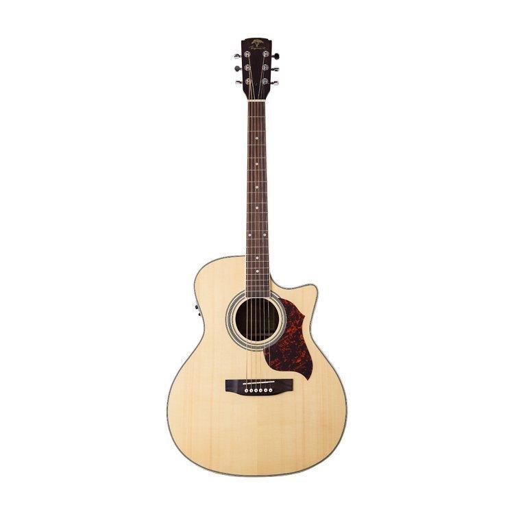 Акустична гітара Virginia VD130CE