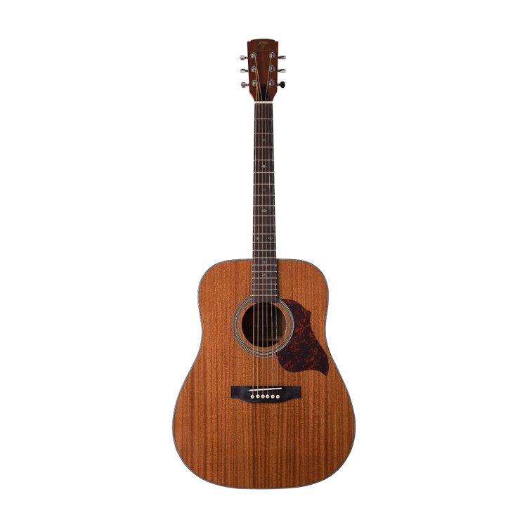 Акустична гітара Virginia V-D30E