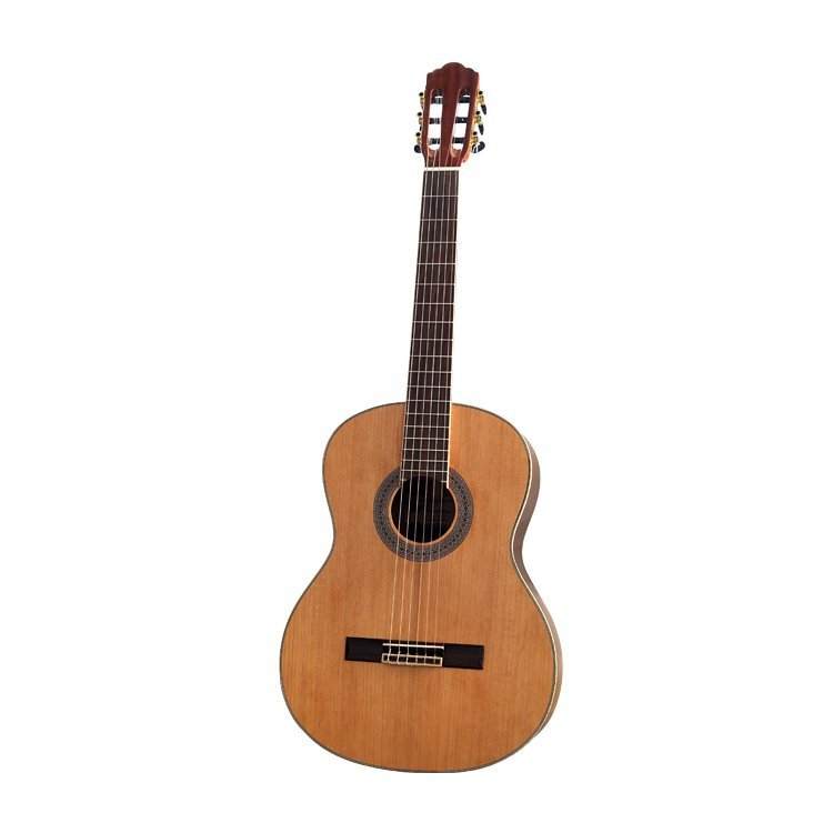 Класична гітара Virginia CC-120