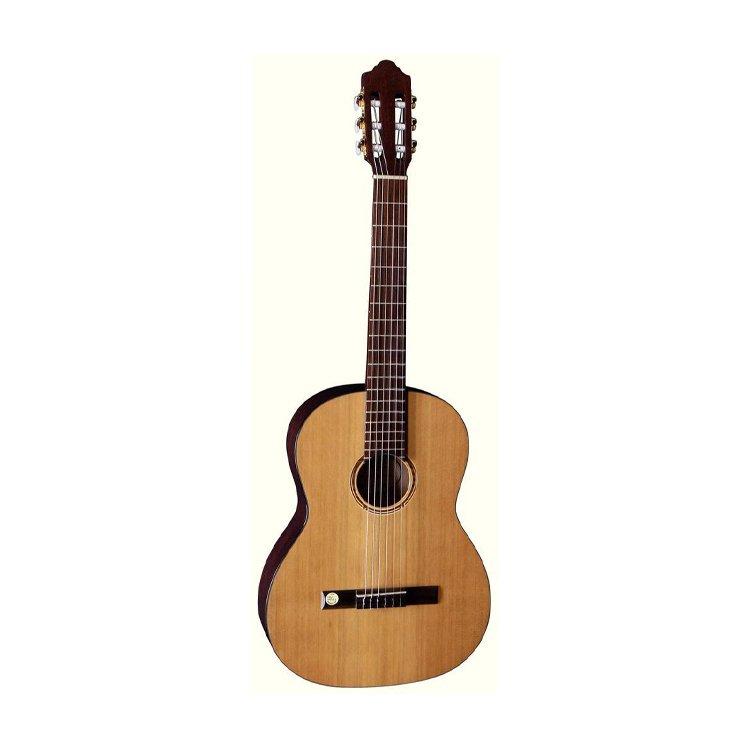 Класична гітара Pro Natura Bronze Siana