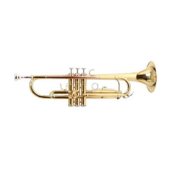 Труба Roy Benson TR-101