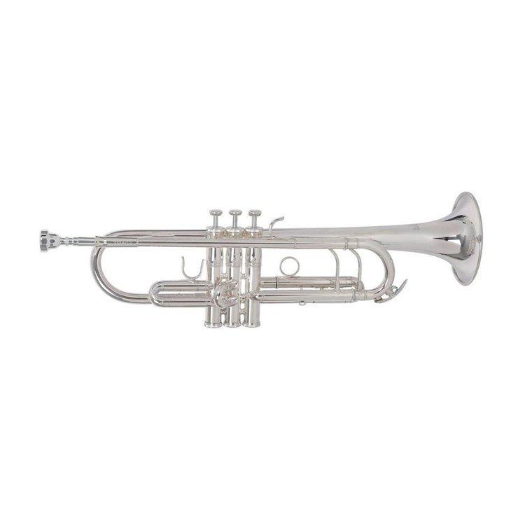 Труба Roy Benson TR-403S