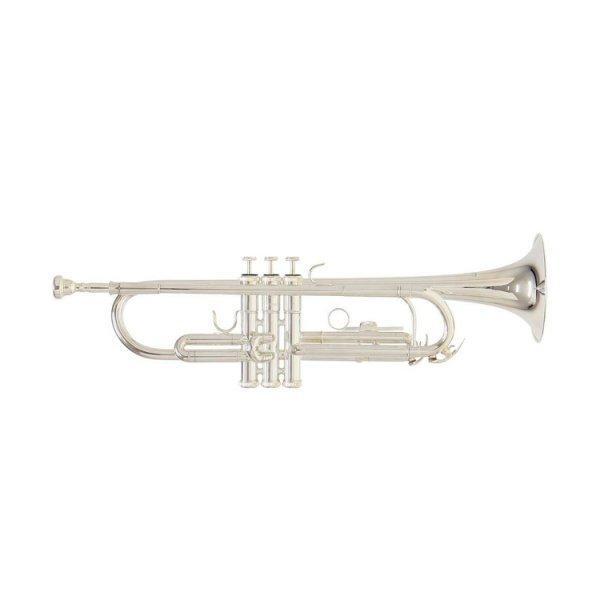 Труба Roy Benson TR-202S