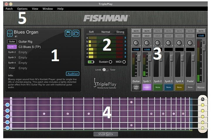 FISHMAN Software